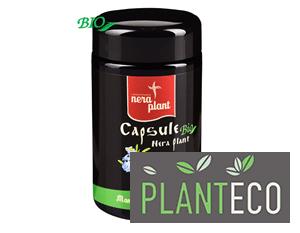 Capsule Memo-complex, 90 cps, Nera Plant