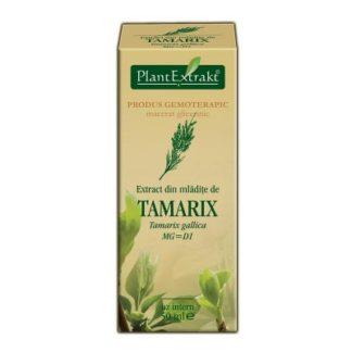 Extract din mlădiţe de CĂTINĂ ROŞIE, 50 ml, Plant Extrakt