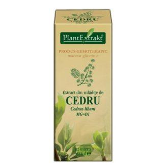 Extract din mlădiţe de CEDRU, 50 ml, Plant Extrakt