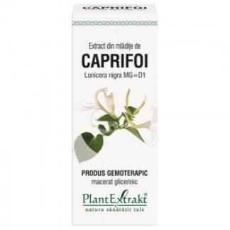 Extract din mlădiţe de CAPRIFOI NEGRU, 50 ml, Plant Extrakt