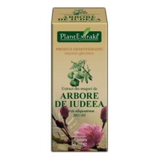 Extract din muguri de ARBORE DE IUDEEA, 50 ml, Plant Extrakt