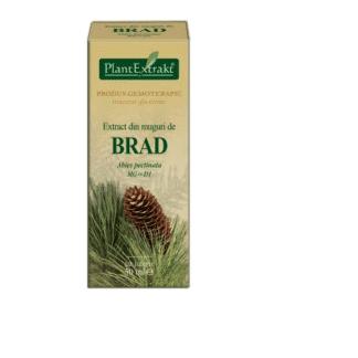 Extract din muguri de BRAD, 50 ml, Plant Extrakt