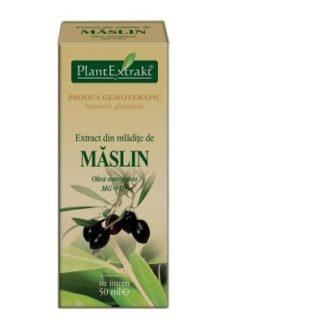 Extract din mlădiţe de MĂSLIN, 50 ml, Plant Extrakt
