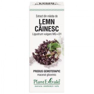 Extract din mlădiţe de LEMN CÂINESC, 50 ml, Plant Extrakt