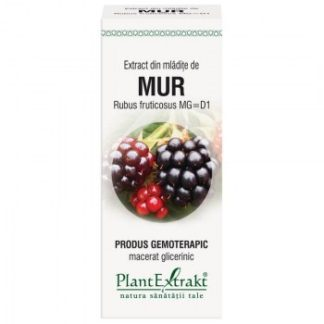 Extract din mlădiţe de MUR, 50 ml, Plant Extrakt