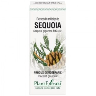 Extract din mlădiţe de SEQUOIA, 50 ml, Plant Extrakt