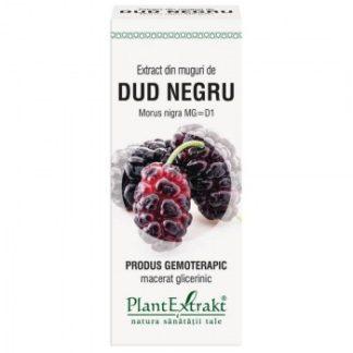 Extract din muguri de DUD NEGRU, 50 ml, Plant Extrakt