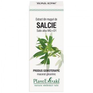 Extract din muguri de SALCIE, 50 ml, Plant Extrakt