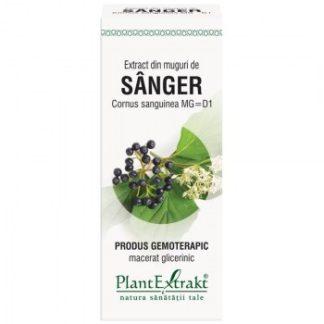 Extract din muguri de SANGER, 50 ml, Plant Extrakt