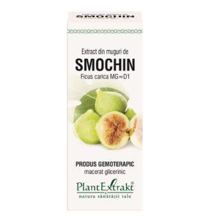 Extract din muguri de SMOCHIN, 50 ml, Plant Extrakt