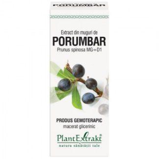 Extract din muguri de PORUMBAR, 50 ml, Plant Extrakt