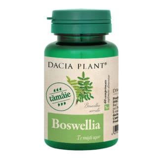 Boswellia comprimate, 60 cpr, Dacia Plant